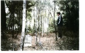 Cemetery ngunguru