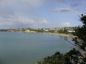 Clifftop walk to work - looking down to Browns Bay and along the coast