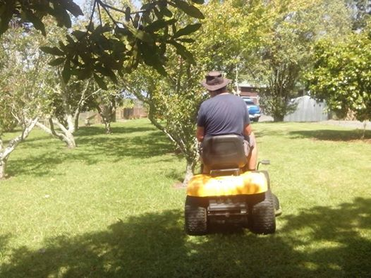 ride on mower.jpg